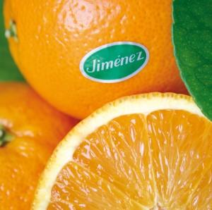 Foto-naranjas-de-Naranjas-Jiménez