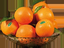 Frutero de Naranjas Jiménez