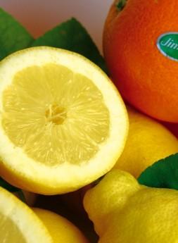 Limones y Naranjas Jiménez
