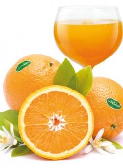 Calendarios - Zumo Naranjas Jiménez