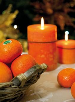 Calendarios - Mandarinas y Naranjas Jiménez