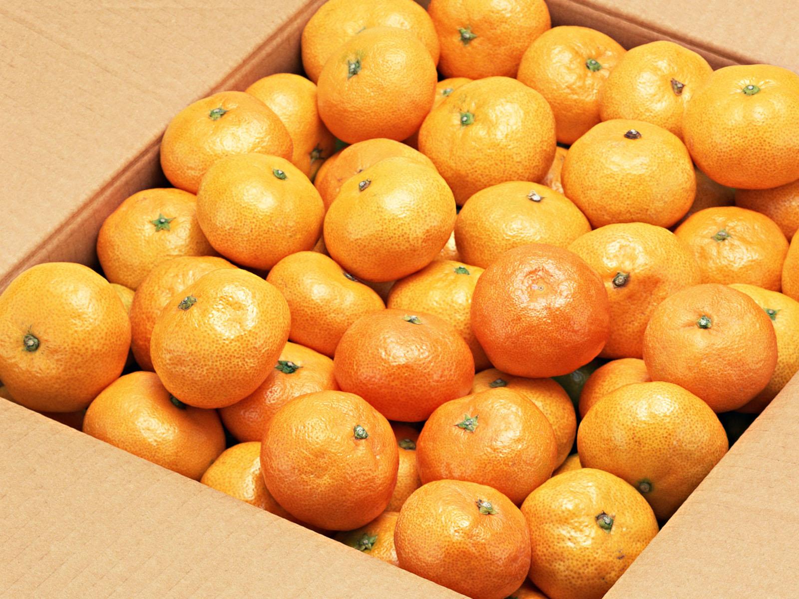 Mandarinas #NaranjasJimenez #SiLaVidaTeDaNaranjas