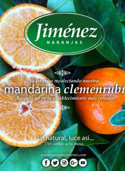 Naranjas Jimenez - Mandarinas ClemenRubi